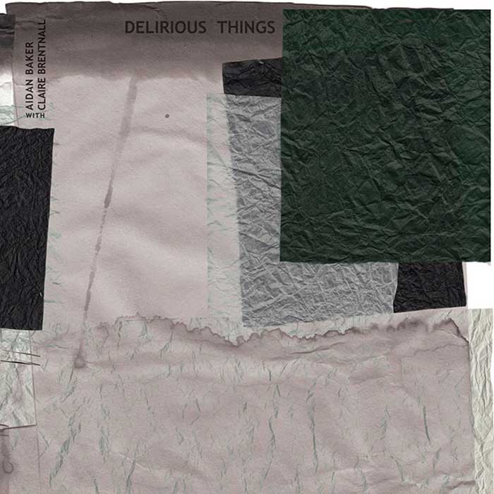 Delirious Things - Aidan Baker with Claire Brentnall