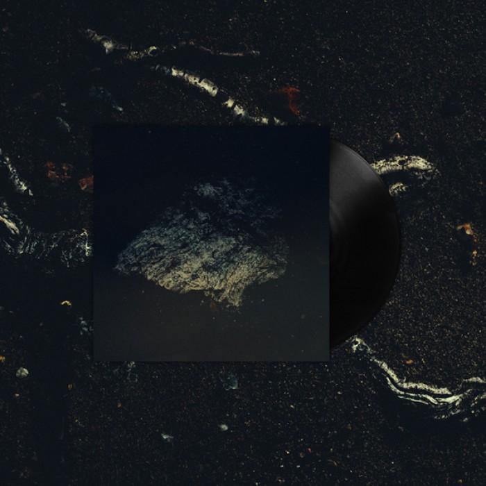 Lost World - Multicast Dynamics