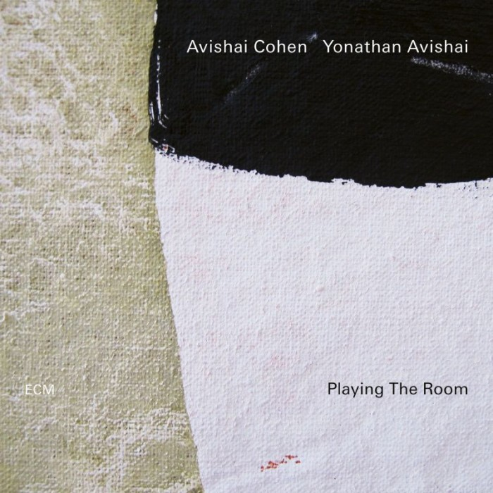 Playing the room – Avishai Cohen  Yonathan Avishai