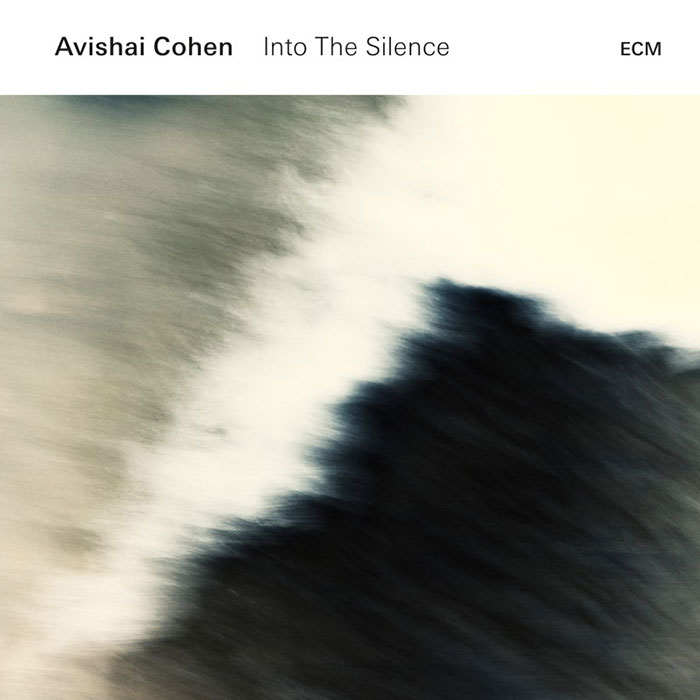 Into The Silence - Avishai Cohen